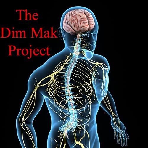 * Dim Mak Project Video Course